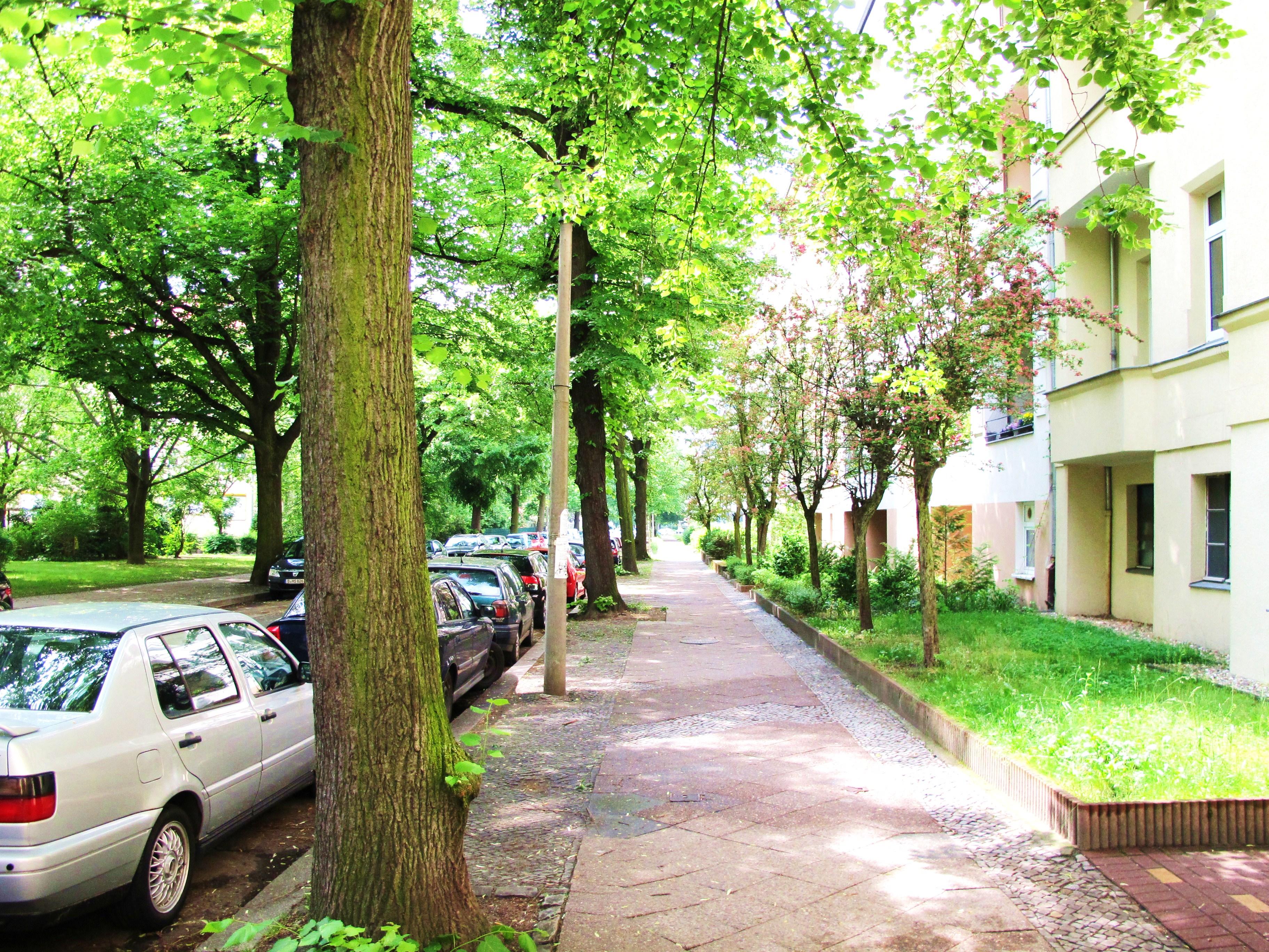 Zillertalstraße_Straßenblick